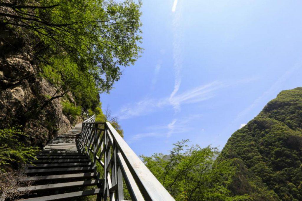 秦岭国家植物园对全国医护工作者实行免费开放的通告